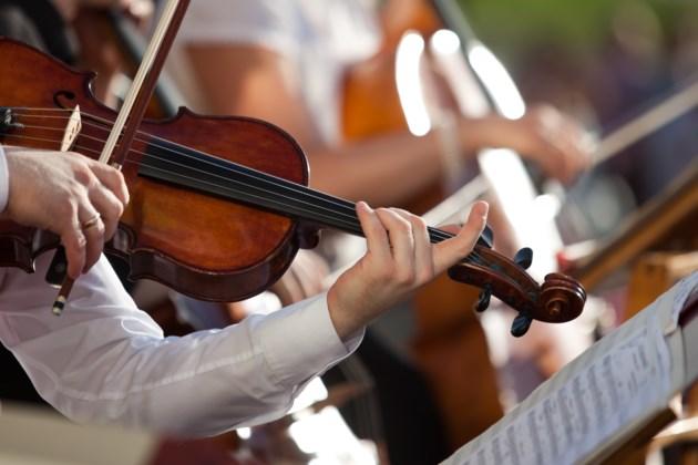 violinist shutterstock