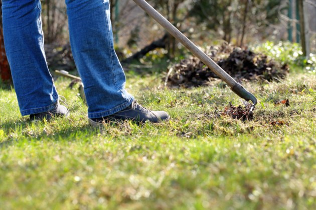 yard work AdobeStock