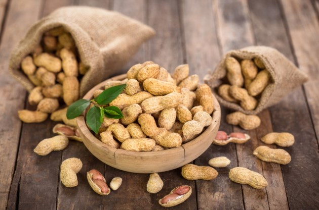 BEYOND LOCAL: Managing peanut allergies with 'immunotherapy' rather than avoidance - OrilliaMatters.com