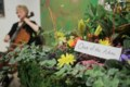 Floral arrangements inspired by works of art <b>(9 photos)</b>