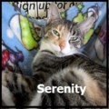 <b>Creature Feature:</b> Serenity likes to talk