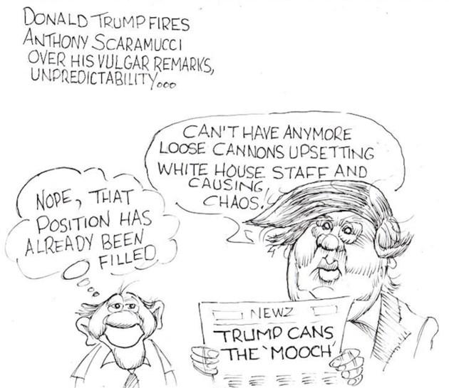 Moffatt canned mooch