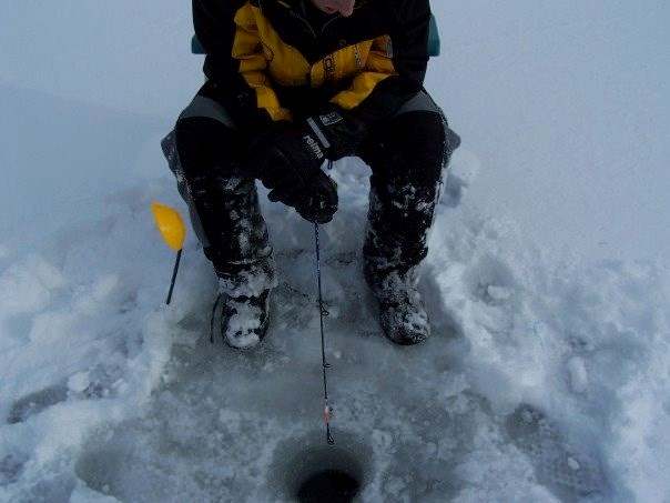 Go ice fishing for free this long weekend for Go ice fish