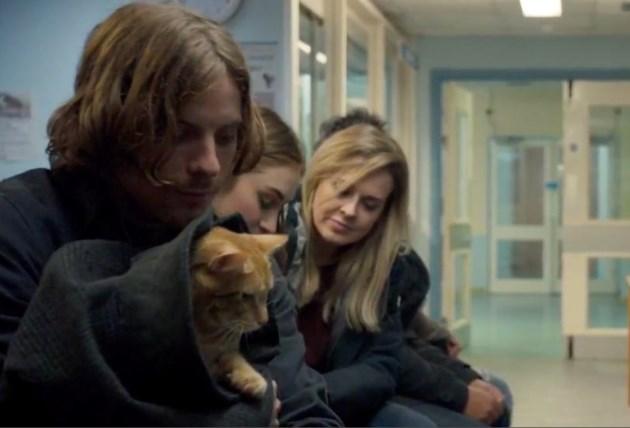 2019-06-07 A Street Cat Named Bob