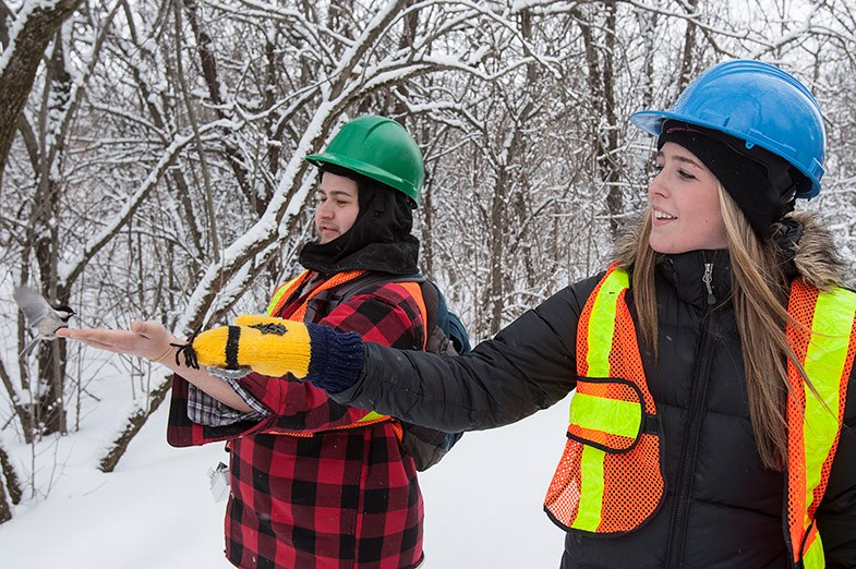 Sault College students feed a chickadee on Whitefish Island March 20, 2014.