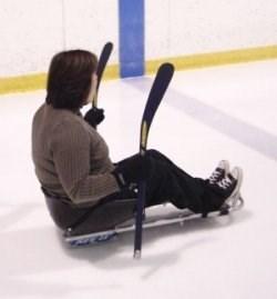 SledgeSkating