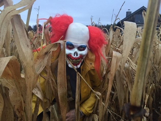 2017-10-24 Haunted Corn Maze claown - Farmer Bob