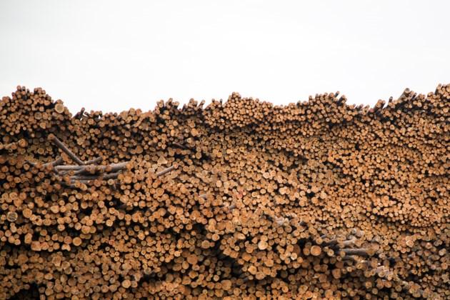 20140531 Raw Lumber in Hearst KA