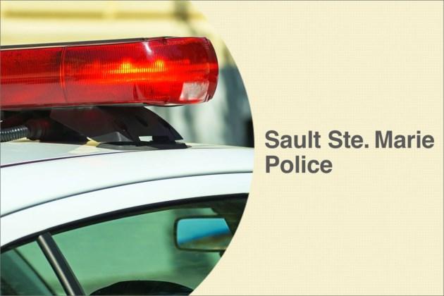 crime_police_sault_car1