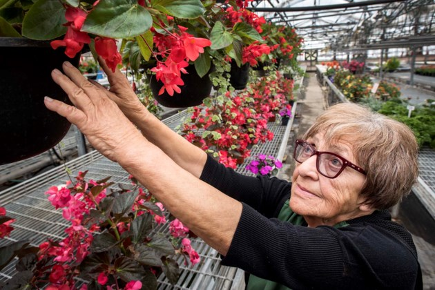 0307 Morinville Greenhouses DR006