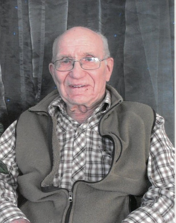 Robert Lewis obituary picture