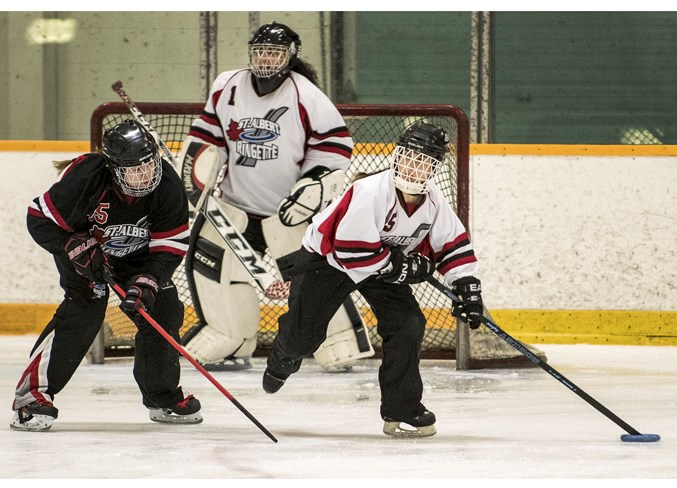 HERE IT COMES – Megan Romaniuk, right, of the St. Albert Edge looks up ice for a teammate with netminder Tianna Miller in the background as Sarah Stengel of the St. Albert Stealth gives chase at the Ringette Alberta open (18-plus) B championship. The Edge won Friday's pool A opener 5-4 at Mark Messier Arena. In Sunday's playoff round in the eight-team tournament, the Stealth lost the gold-medal final 6-5 to Medicine Hat and the Edge dropped a 4-2 decision to the Riviere Qui Barre Twisters. The Stealth won last year's championship as the Senior B's. DAN RIEDLHUBER/St. Albert Gazette