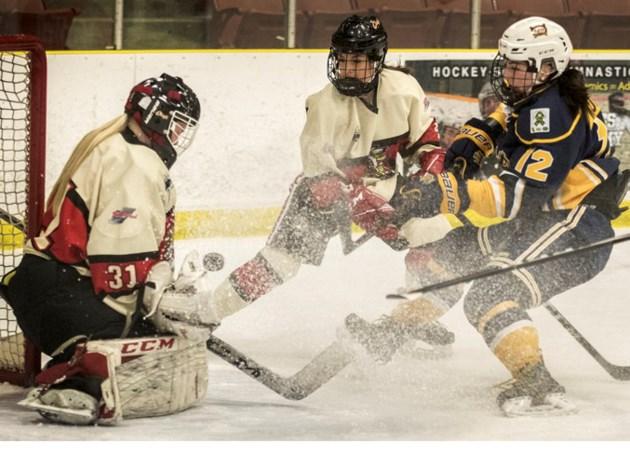 Weekend Hockey Games Stalberttoday Ca