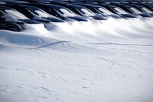 PHOTOS: Sudbury.com readers brave the storm