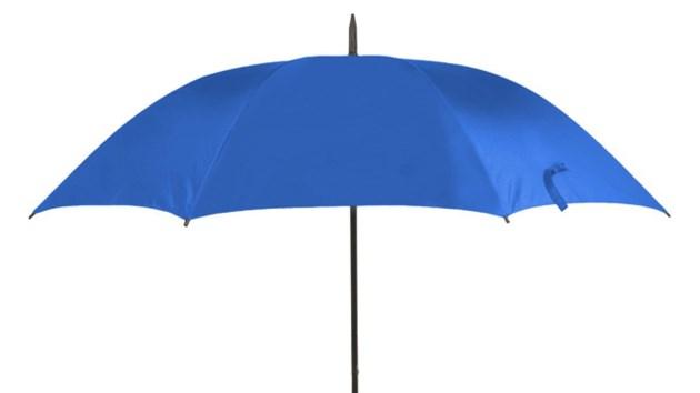 Businesses Getting A Blue Umbrella For Dementia
