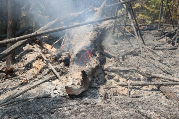110619_MNRF-Timmins2-fire3