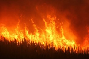 Two of 38 forest fires not yet under control