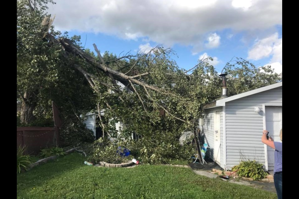 Photos Number Of Sudburians Without Power After Friday Wind Storm