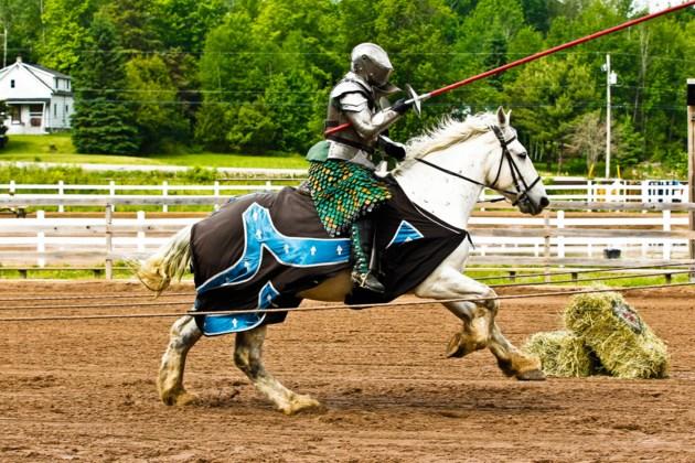 KnightsValour
