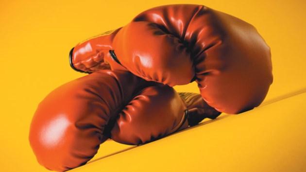 BoxingGlovesSized