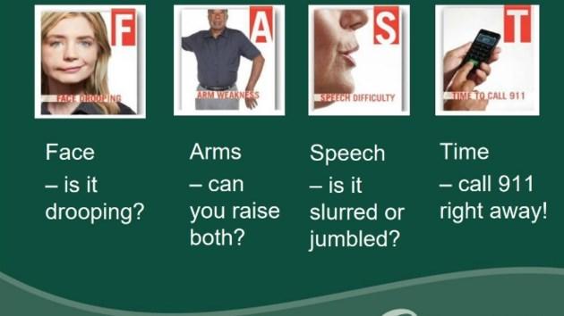 strokesigns