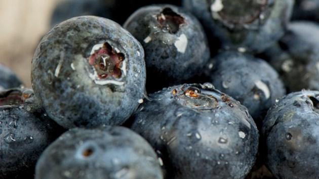 120514_blueberries