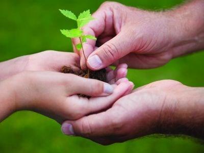 220412_tree_planting
