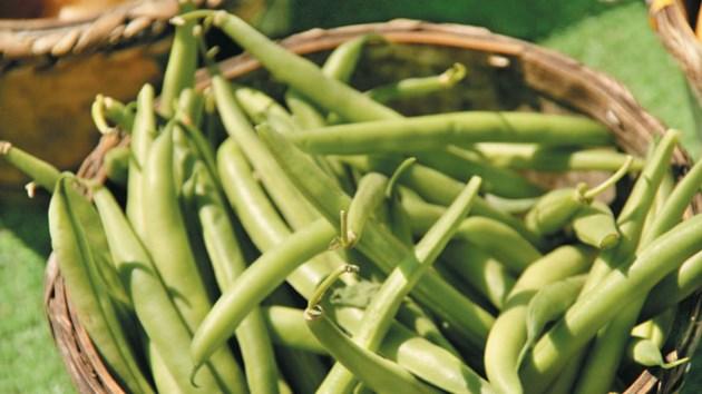 070814_beans