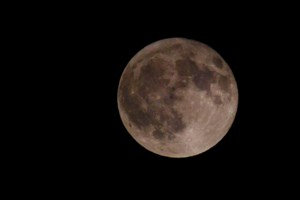 Check out these great harvest moon photos