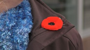 Video: How to securely pin your poppy this Remembrance Day
