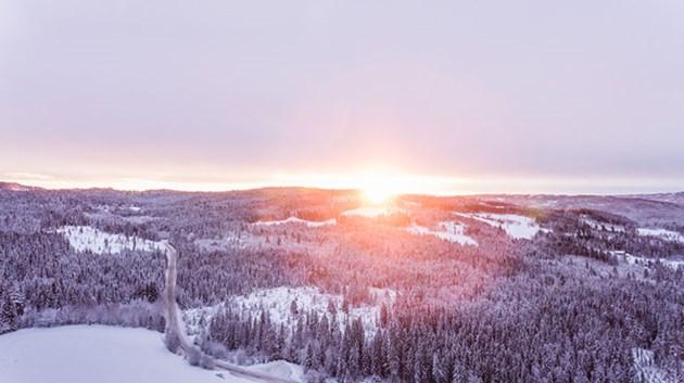 120119_KF_sun_winter