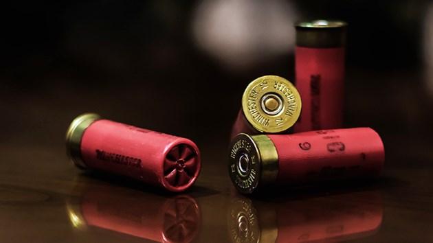 250819_KF_bullets_sized