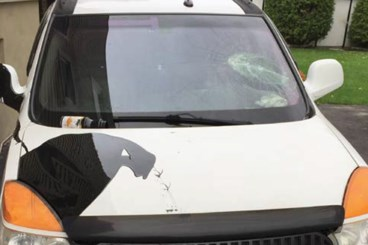 Couple's vehicle vandalized in the night