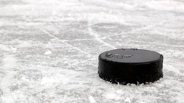 190118_hockey_puck