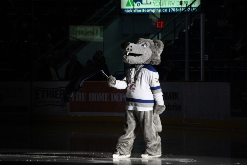 Sudbury Wolves mascot 'Howler' at the Sudbury Arena for the first round of the 2019 OHL Playoffs (Matt Durnan/ Sudbury.com)