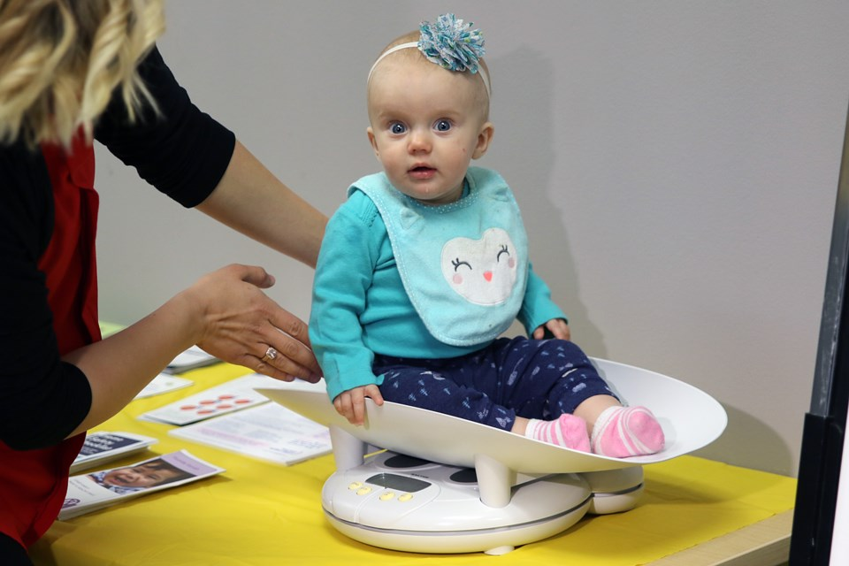 Lakehead Public Schools invited staff on maternity and paternity leave bring their children to this year's Celebration of Babies (Leith Dunick, tbnewswatch.com).