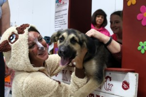 Animal lovers 'paws for a cause'