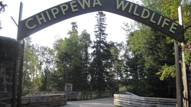 Chippewa-Park-Facebook