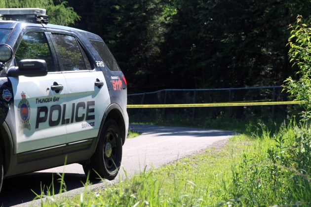 Landmark Trails Assault