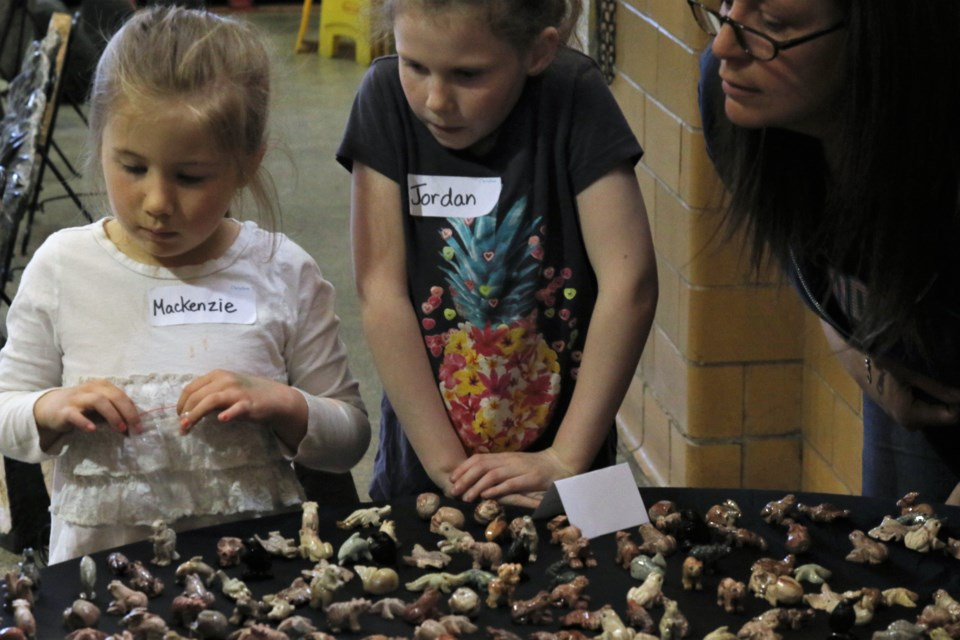 Students from Gorham & Ware Community School look at animal-shaped rocks. (Michael Charlebois, tbnewswatch.com)