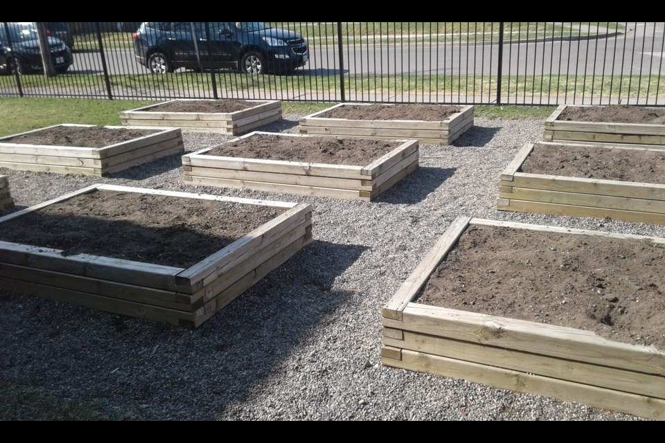 The community garden at St. Jude School in Thunder Bay (EcoSuperior photo)
