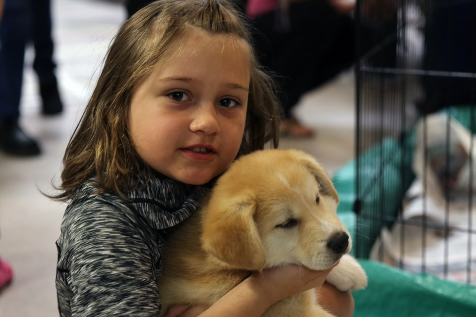 Madison Kuster poses with a rescue pup. (Michael Charlebois / tbnewswatch)