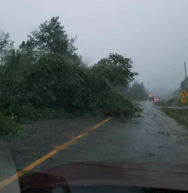 Storm system causes damage in Northwestern Ontario