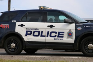 Two charged in dog killing