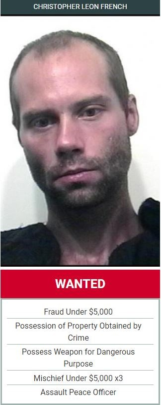 Wanted Wednesday (May 15)
