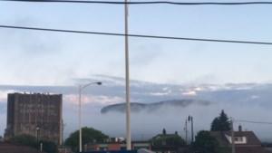 Westfort View