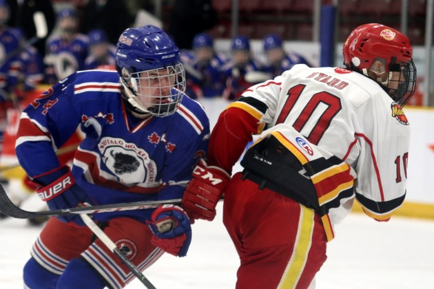 Calgary Knocks Halifax Out Of Telus Cup Contention Tbnewswatch Com