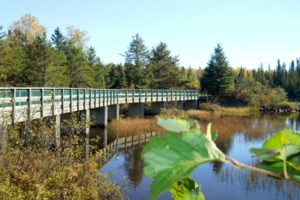 Hazelwood Dam