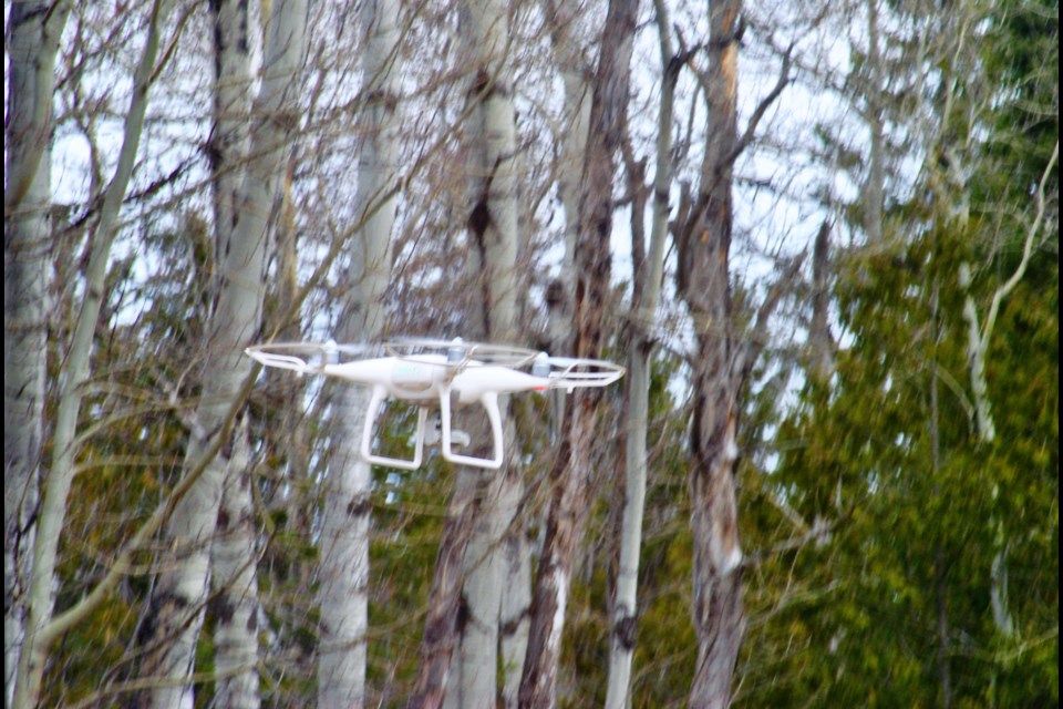 The drone reaching near the top of the trees. Frank Giorno for TimminsToday.